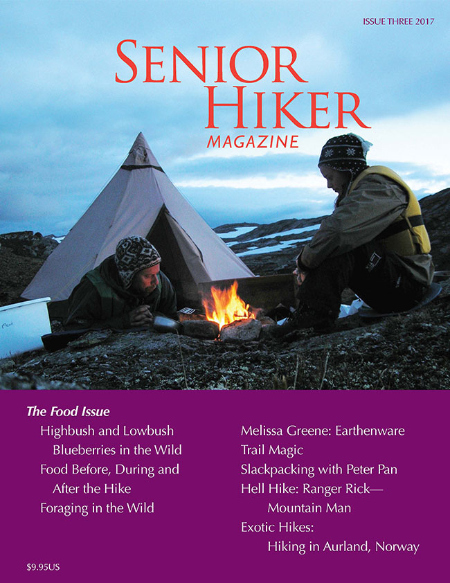 magazine-cover-3