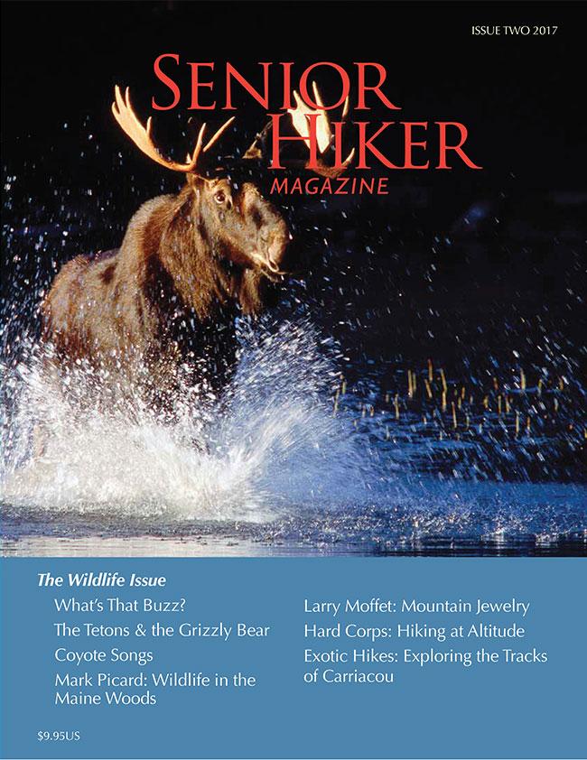 magazine-cover-2